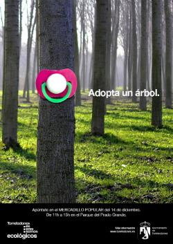 Adopta un árbol, fomenta la biodiversidad en Torrelodones