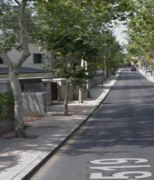 AcTUa denuncia la continua tala de árboles en Torrelodones