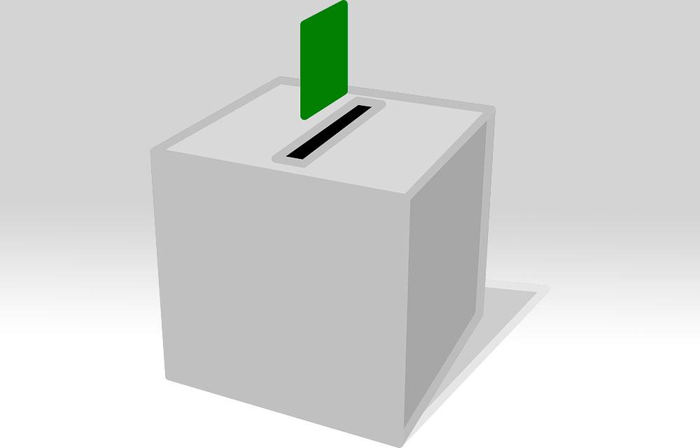 ViveTorre y las elecciones municipales