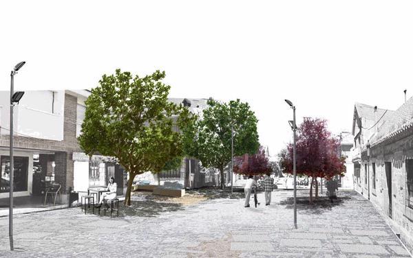 El árbol extraído en la calle Real será reemplazado por otros ejemplares