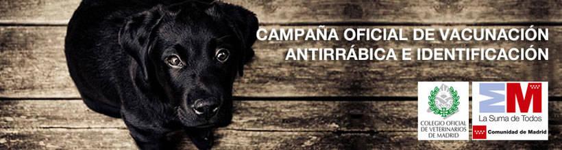 Campaña oficial de vacunación antirrábica e identificación