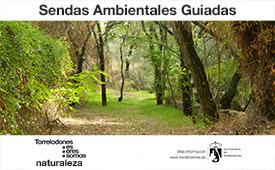 Sendas ambientales guiadas por Torrelodones. Diciembre.