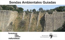 Sendas ambientales guiadas por Torrelodones en junio