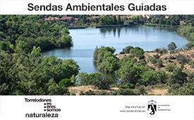 Sendas ambientales guiadas por Torrelodones: mayo