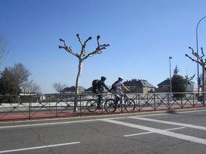 El 'carsharing' se incorpora a las ordenanzas y se regulará el uso de patinetes