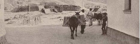 Fotografía: Asociación Histórico-Cultural Cierzo