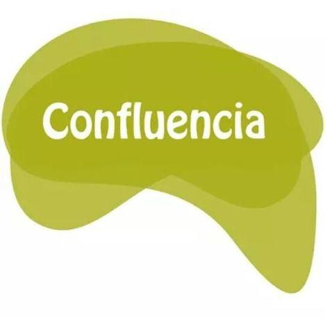 """Confluencia denuncia una batalla """"desleal y antidemocrática"""" contra su concejal"""