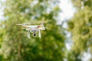 Drones escolares para ayudar a revitalizar el río Guadarrama