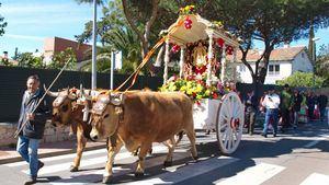 Este domingo, Romería de la Virgen del Rocío en Las Matas
