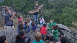 El Escorial libera un búho en colaboración con GREFA y Deverde