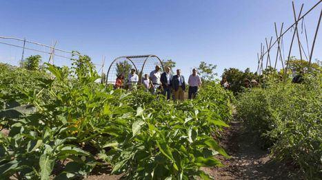 Cinco años promoviendo el emprendimiento agrario