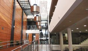 La Biblioteca Municipal Ricardo León celebra su Día