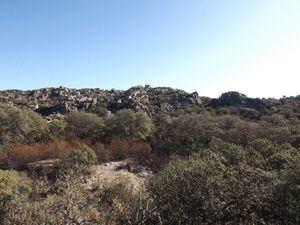 El Monte de los Ángeles: un patrimonio de todos