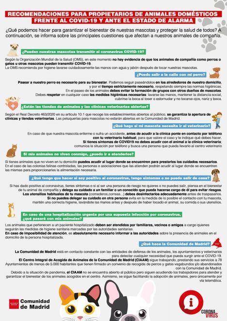 Recomendaciones de la Comunidad de Madrid a los dueños de mascotas