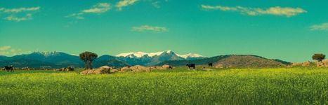 La Sierra de Guadarrama, uno de los destinos soñados para viajar tras el coronavirus