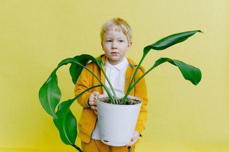 El SEJUVE de Guadarrama invita a los más pequeños a adoptar plantas