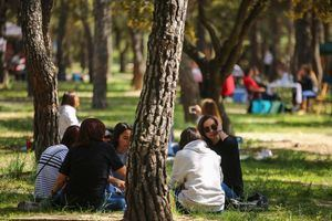 Las Rozas fija el 9 de noviembre y el 29 de septiembre como fiestas locales para 2021