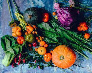 Este domingo, 13 de diciembre, nueva edición del Mercado Ecológico de Hoyo de Manzanares
