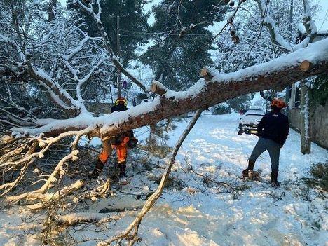 Torrelodones solicitará la declaración de zona catastrófica tras el paso de la borrasca Filomena