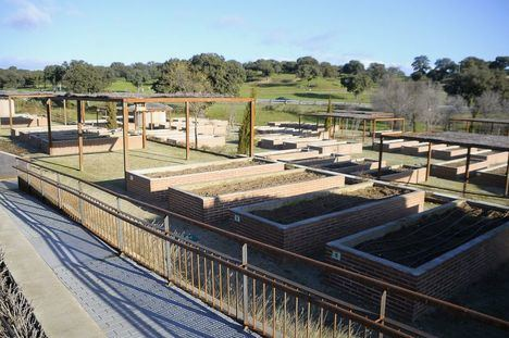Boadilla abre el plazo para solicitar la explotación de los 44 huertos urbanos municipales