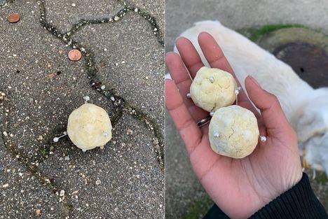 Alertan sobre la aparición de bolas de pan con alfileres en el entorno de la Avenida de la Dehesa y el Instituto de Torrelodones