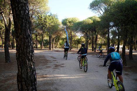Las Escuelas Deportivas de exterior y las actividades deportivas al aire libre de Las Rozas retoman su actividad