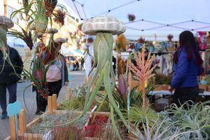 Las Rozas acoge el sábado 13 de marzo la Feria Verde del Medio Ambiente y la Ecología