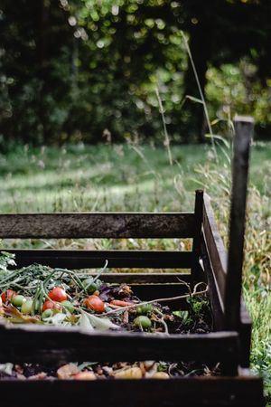 El Escorial abre la participación para formar parte de su proyecto gratuito de compostaje doméstico