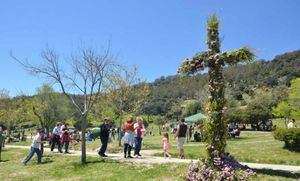 El Ayuntamiento de Moralzarzal anuncia la suspensión, por segundo año, de la Cruz de Mayo