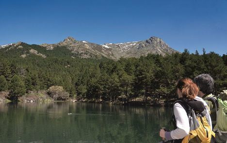 La Comunidad de Madrid y ADESGAM desarrollan un proyecto pionero para disminuir la huella de carbono en la Sierra de Guadarrama