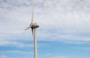 Ecologistas en Acción presenta alegaciones a la creación de un parque eólico y una línea de alta tensión en la Sierra