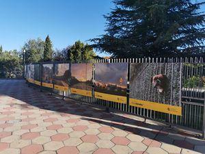Pozuelo se suma a PHotoESPAÑA con una exposición en el exterior del Espacio Cultural MIRA