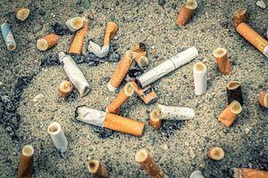 Petición online para que se prohíba fumar en espacios como el Parque Nacional de la Sierra de Guadarrama