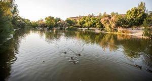 Finalizan las labores de limpieza de los lagos del parque París