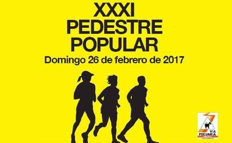 XXXI Pedestre Popular de Torrelodones