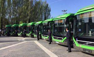 Sillas motorizadas, bicis y pequeñas mascotas podrán ir en buses interurbanos