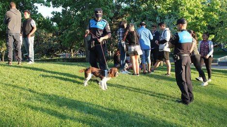 Majadahonda retoma la campaña anti-botellón en vía pública