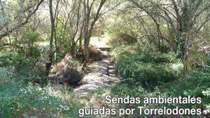 Torrelodones. Sendas guiadas en el mes de julio