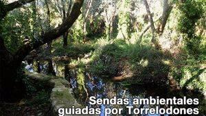 Sendas ambientales guiadas por Torrelodones