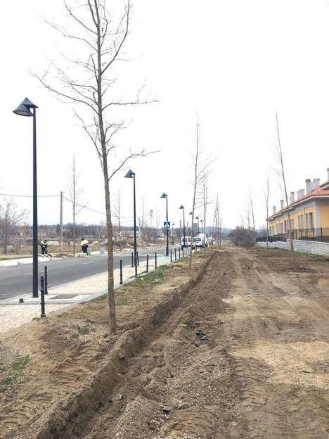 Plantación de árboles en El Ensanche