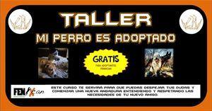 Cursos gratuitos en el Centro de Acogida de Animales
