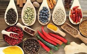Conferencia sobre constitución física y alimentación correcta según Ayurveda