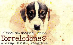 I Concurso Nacional Canino de Torrelodones