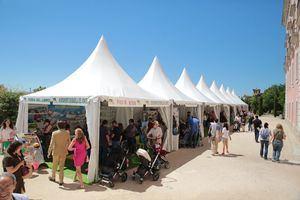 Boadilla celebra su Feria del Libro con el cómic como protagonista
