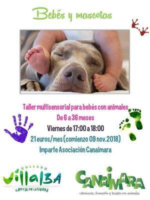 Un taller ofrece ocio y educación asistida con animales para bebés