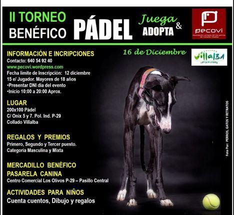 Pádel solidario para promover la adopción de perros