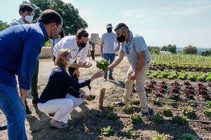 La huerta-laboratorio del chef Mario Sandoval en San Lorenzo, una apuesta para reactivar el sector agrícola