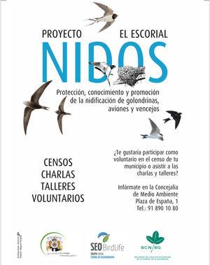 El Escorial lanza el proyecto 'Nidos' para proteger los nidos de golondrinas, aviones y vencejos