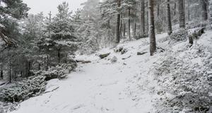 La Comunidad activa el nivel 0 del Plan de Inclemencias Invernales y recomienda no acudir a la Sierra