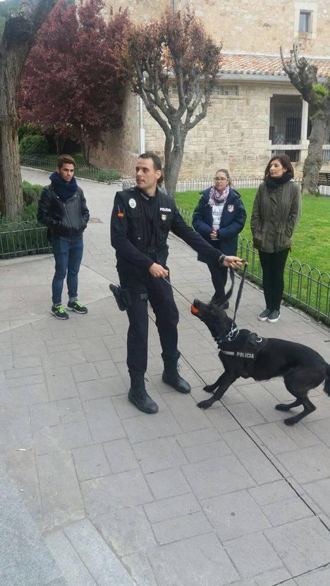 Curso de adiestramiento canino adaptado a sordos